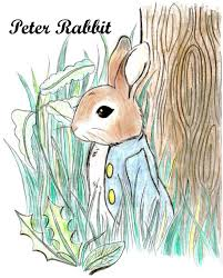 peter rabbit sakurachan99 deviantart