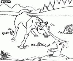prairie dog coloring page horses coloring pages horses coloring book horses printable
