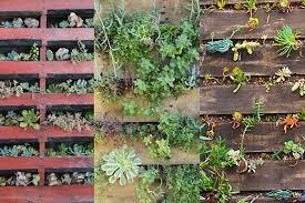 Diy Vertical Pallet Garden - 3 amazing vertical pallet gardens australian handyman magazine