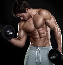 cómo ganar músculo tomando titan gel con un presupuesto corto