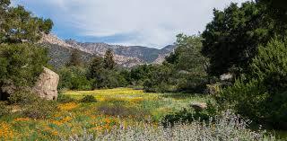 Botanic Garden Santa Barbara Outdoor Recreation Near Cielito Montecito