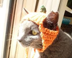 Pet Cat Halloween Costume Pumpkin Cat Hat Cat Costume Cat Cat Clothes Pet Hat