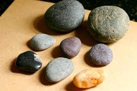 edible rocks mongolia rocks eat play