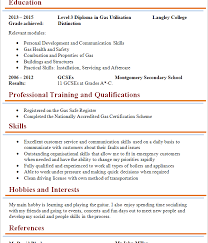 Cleaner Sample Resume 646 Best Other Images On Pinterest Job Search Resume Examples
