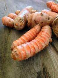 Is Ginger Root A Vegetable - the rainforest garden how to grow turmeric