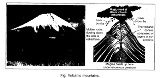 ncert solutions for class 6th social science geography chapter 6
