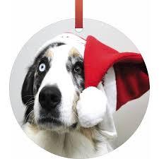 in a santa hat hanging shaped tree ornament flat
