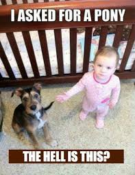 Child Memes - 20 of the best baby memes ever number 7 is brilliantly cute
