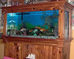 How To Clean Fish Tank Decorations How To Replace Your Aquarium Gravel