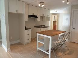 Galley Kitchen Designs Ideas Minimalist Kitchen Island Small Basement Kitchen Design Ideas