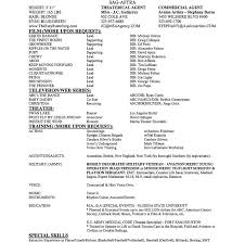 Resume Example Executive Or Ceo Careerperfectcom Resumes Example by Spring Break Essay Topics Essay On Pillars Of Islam Essays About