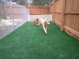 peace in the yard 7 ways to dog proof your fence definitely using