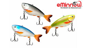 eminnow the worlds 1st fully motorized fishing lure by eminnow