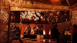 Canopy String Lights by Holiday Disco Ball Cluster With String Lighting In Clear Canopy