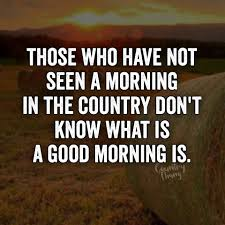 those who have not seen a morning in the country don u0027t know what