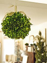 how to make a boxwood kissing ball hgtv