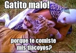 Lucha Libre Meme Images?q=tbn:ANd9GcR8twD0RF_-wb8-iMEuIiVQckMnjm_MtfRYnBJTiafidDS11ftP
