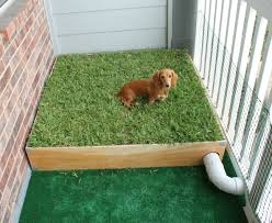 Dog Kennel Flooring Outside by Dog Porch Potty With Real Grass And Drainage System Grasses