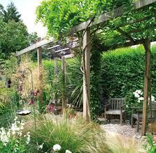kletterpflanzen fã r balkon kletterpflanzen fur pergola pergola bepflanzen welche
