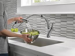 Long Reach Kitchen Faucet Delta Linden Single Handle Pull Out Standard Kitchen Faucet