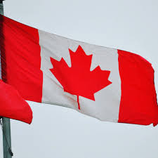What Leaf Is On The Canadian Flag Mapleleaf Hashtag On Twitter