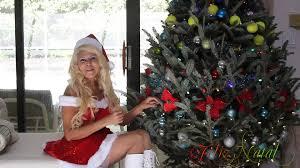 merry christmas prosperous 2014 portuguese brazil