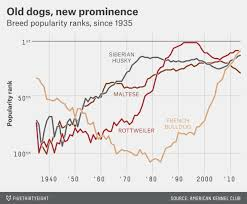 affenpinscher judging list terriers were once the greatest dogs in the world fivethirtyeight