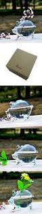 shina creative clear glass small pig type table vase decoration
