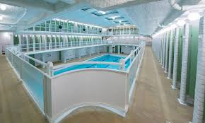 striking paris art deco swimming pool reopens travel guardian