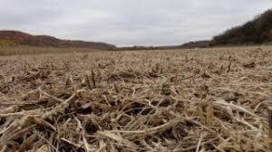 Resume Harvesting Fall 2014
