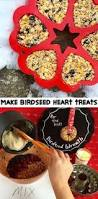 Bird Seed Decorations For Christmas Tree by Bird Seed Treats Easy To Make And Mold Into Just About Any Shape