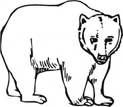 printable grizzly bear coloring kidz coloring point