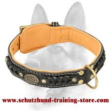 Comfortable Dog Collar Designer Buckle Dog Collar With Nappa Leather Padding For Schutzhund