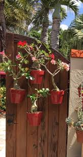 Small Flower Pot by 119 Best Vertical Small Space Garden Design With Flower Pots