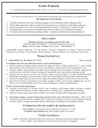 Resume Sample Doc 100 Doc Review Resume Sample Best Software Engineer Fashion