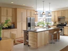 Shaker Vs Slab Door Style - Slab kitchen cabinet doors