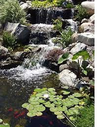 Small Backyard Ponds And Waterfalls by Best 10 Waterfall Design Ideas On Pinterest Garden Waterfall