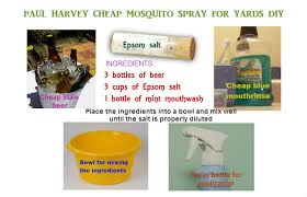 Off Backyard Spray Reviews Homemade Mosquito Yard Spray Is Cheap Effective And Easy To Do