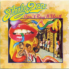where can i buy a photo album steely dan can t buy a thrill iconic album covers
