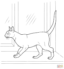 siamese cat coloring page free printable coloring pages