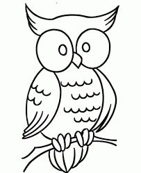 elegant printable owl coloring pages regarding encourage in