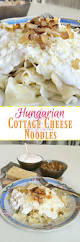 hungarian cottage cheese noodles anna can do it