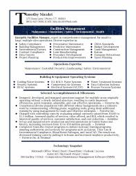 Best Resume Executive Summary by Tori Award Winner Examples Best Best Executive Resumes Healthcare