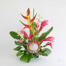 flower of the month hawaiian flowers of the month with our aloha