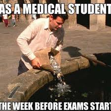 Usmle Meme - daily dose of memes medical memes instagram photos and videos
