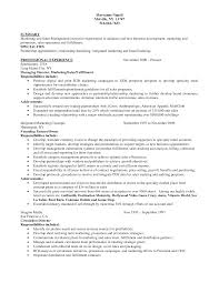 Resume Format For Sales And Marketing Manager Cv Format Business Development Executive