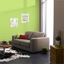 peinture verte cuisine association couleur avec le vert dans salon chambre cuisine