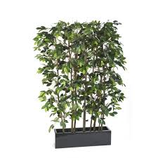 artificial ficus screen office or restaurant plants for room divider