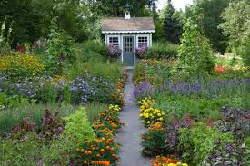 blue hill garden a beautiful refuge for birds and bees the