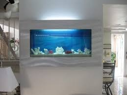 wall aquarium everything you need to consider before you get a wall mounted fish